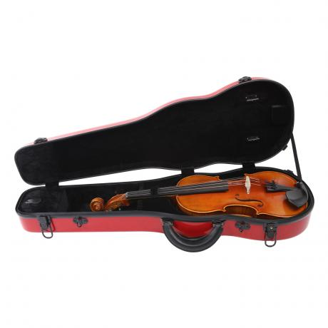 PACATO Challenge Violinetui