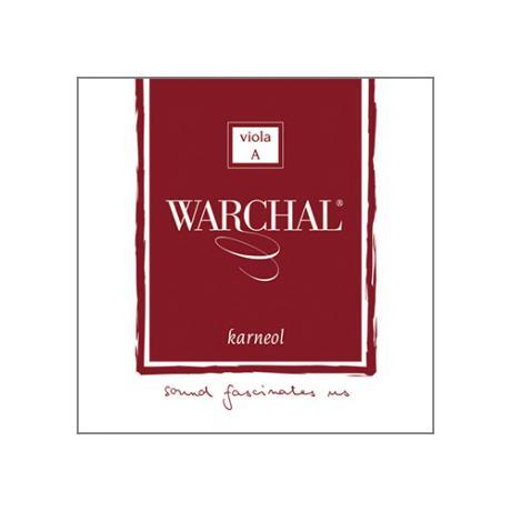 WARCHAL Karneol viola string D