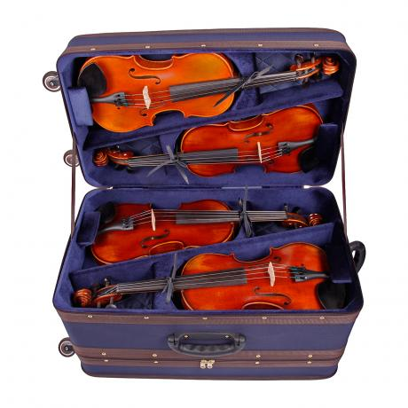 AMATO Multi 8 violin case