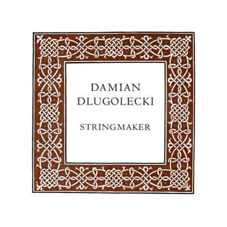 Damian DLUGOLECKI viola string G