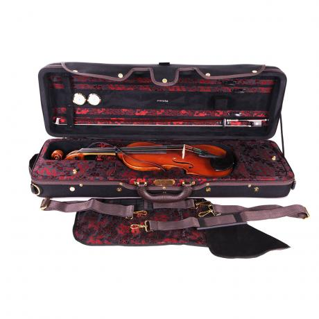 PACATO Dragon violin case