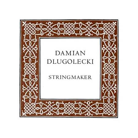 Damian DLUGOLECKI violin string D