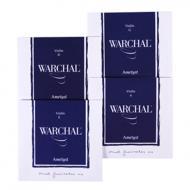 AMETYST violin string SET by Warchal