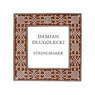 Damian DLUGOLECKI violin string A