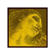 EVAH PIRAZZI GOLD violin string D by Pirastro